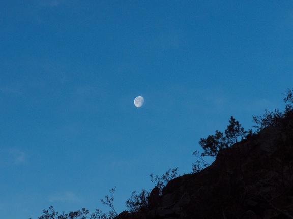 moonset-Blair-Valley-Anza-Borrego-2012-03-11-IMG 0796