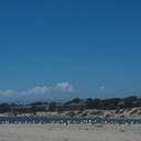Port-Hueneme-beach-2012-08-14-IMG 2639
