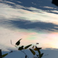 iridescent-clouds-1-2006-02-06