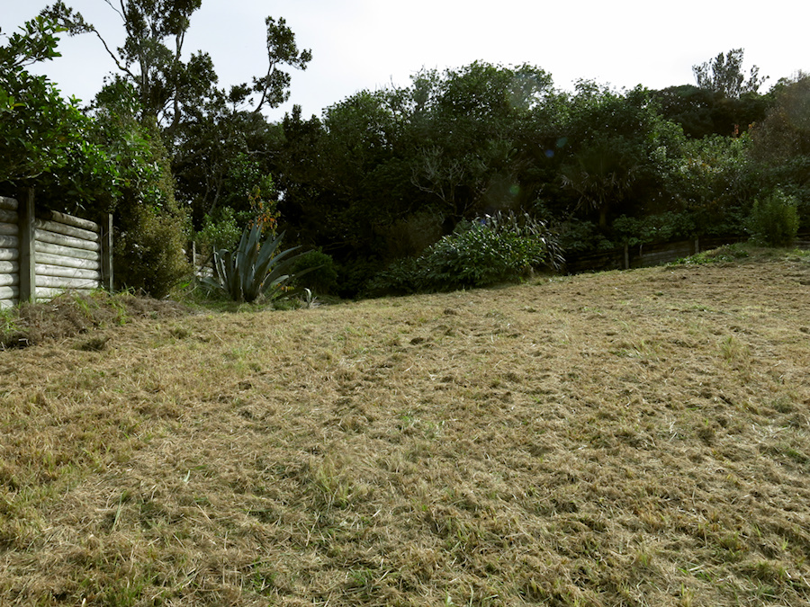Hill-Place-mowed-one-day-earlier-2017-05-29-IMG 8388