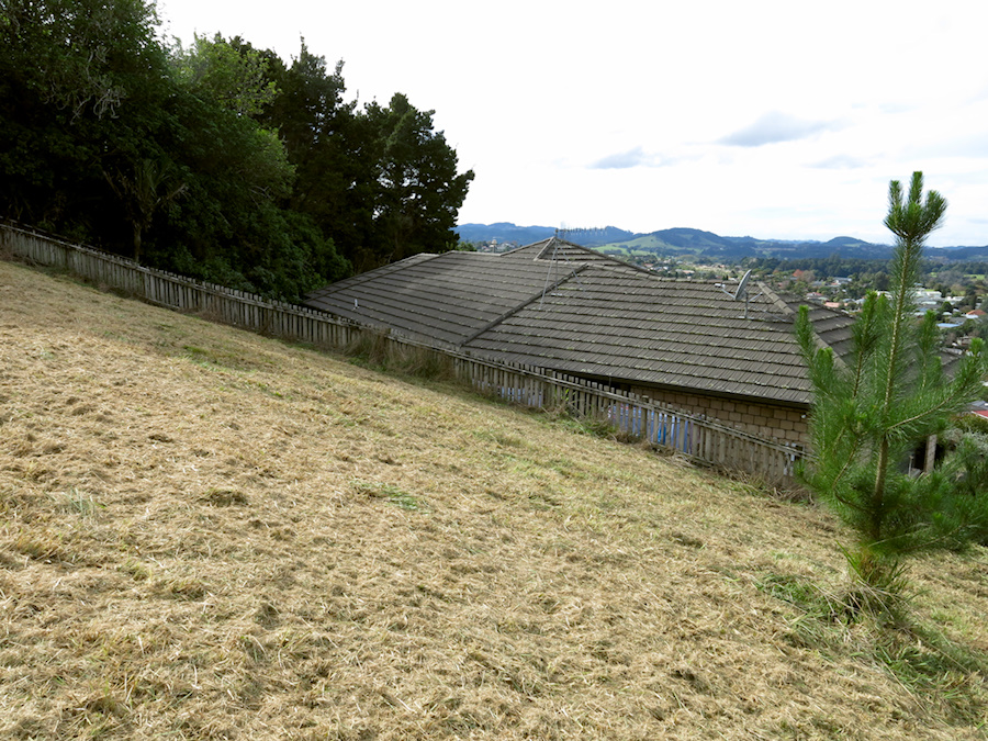 Hill-Place-mowed-one-day-earlier-2017-05-29-IMG 8390